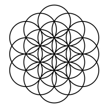 Flower of Life. Fito Innovations 2020.