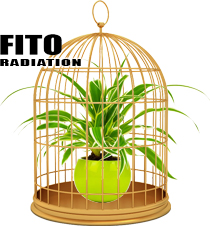 Phyto radiation. LED lighting. FITO Technology.